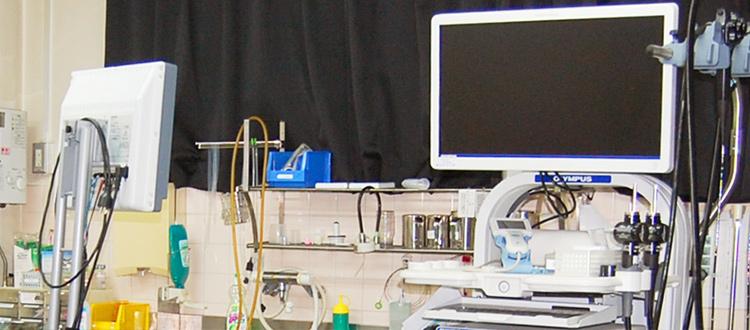 経鼻内視鏡・経口内視鏡検査