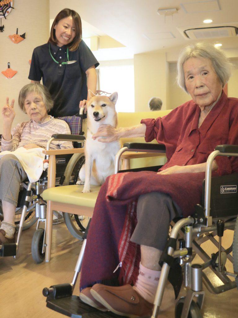三宝会 南港病院グループでは、 コンパニオンアニマルが介護現場で活躍をしています。|南港病院